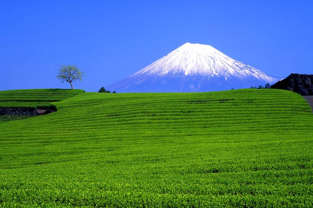 gora_fudziyama_6