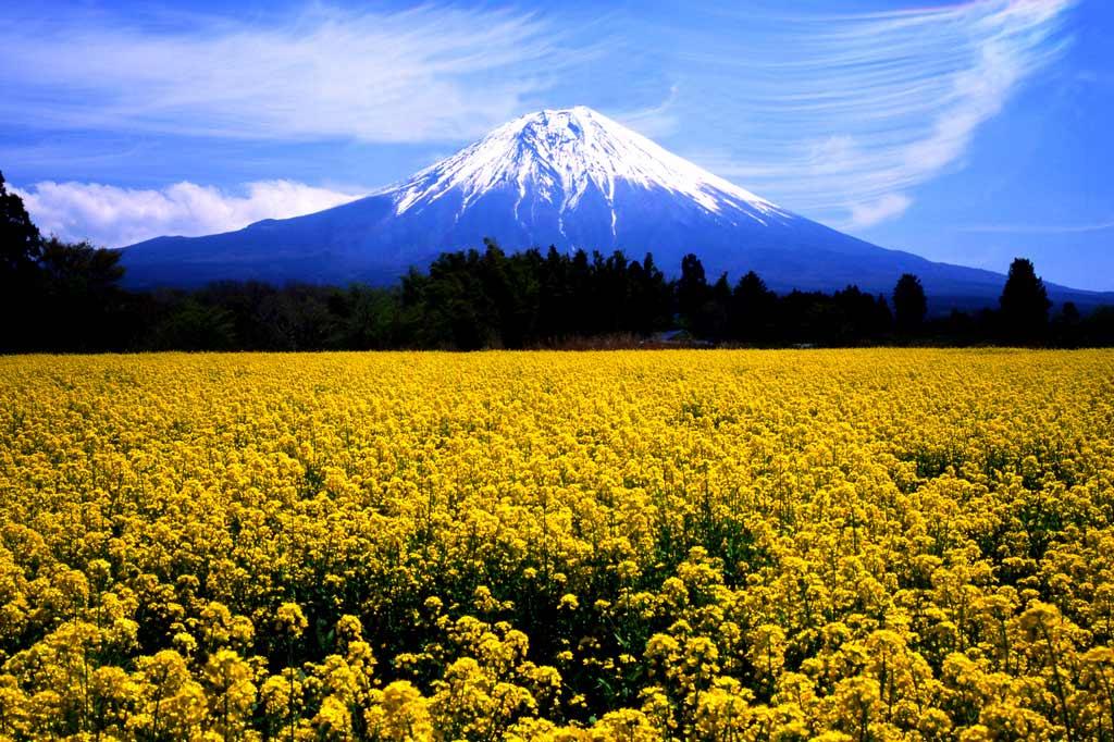 gora_fudziyama_7